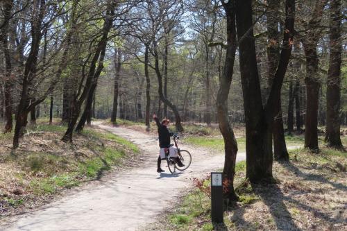 Norg - Drenthe